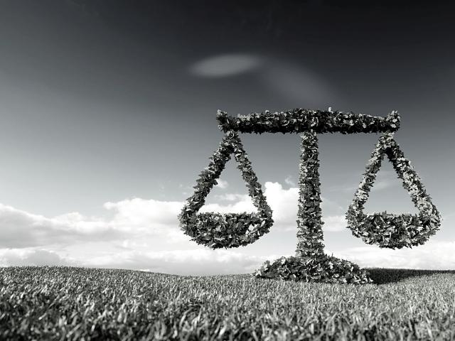 Bilancio sostenibilità
